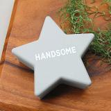 STAR FOOD CASE(Handsome GY)